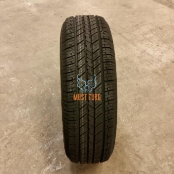225/65R17 102S RoadX RXquest H/T01