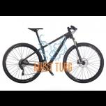 Jalgratas BIANCHI METHANOL 29.6 SX, 48CM