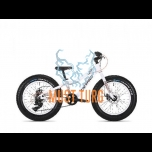 """Jalgratas Drag Cub 20"""" valge"""