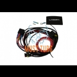 Harness Lazer for T2R / ST4 / RRR750 / RRR1000 lights