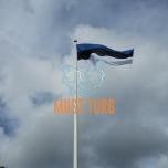 Eesti Vabariigi mastilipp 165x258cm UV-kaitsega