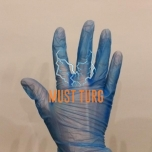 Vinyl glove blue 100pcs size L
