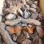 Mulch pine bark pieces fraction 30–70mm 50L