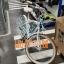 jalgratas adriatica cruiser valge.jpg